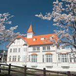 【2019】桜名所も満喫!春デートにおすすめのドライブコース16選!ランチ情報も