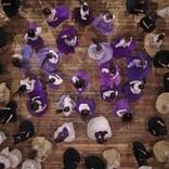 乃木坂46 撮影中に感極まるメンバーが続出、最新MV公開