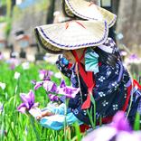【九州】2019年5月のイベント34選!観光やデートにもおすすめ<2019>