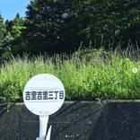 【日刊Sumai】編集部・丸の取材、ときどきプライベート日記 vol.64