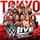 【WWE Live Tokyo 開催直前!見どころ特集コラム Vol.8】WWE日本公演でまさかのサプライズ! 超限定出場のトリプルHが11年ぶりの来日6・28両国でAJスタイルズとチーム結成!