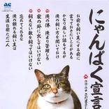 猫「俺の飼い方を聞いておけ」 多頭飼育崩壊に注意促す「にゃんぱく宣言」公開、「関白宣言」さだまさしが歌う