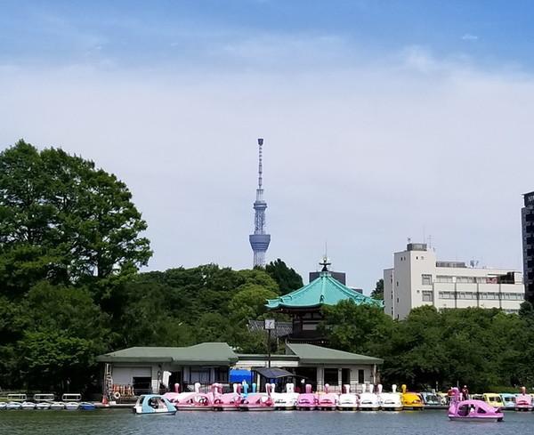 (c)公益財団法人東京都公園協会