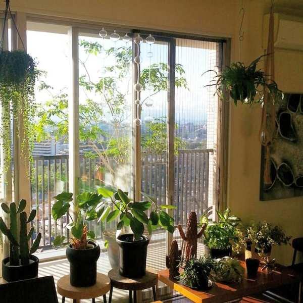グリーンを窓辺に飾って外との一体感を2