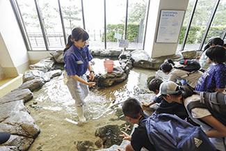 みやじマリン(宮島水族館)