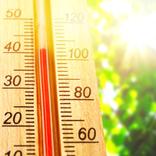 【熱中症対策】暑さや水の事故から「命守る応急処置」を知る方法