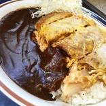 富士そば赤坂見附店限定『アパ社長カレーかつ丼』がなんかよく分からないけどオールスター感が凄い / 立ち食いそば放浪記:第173回