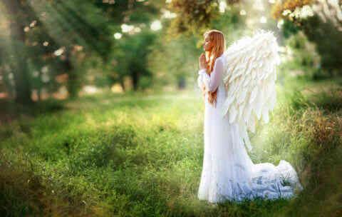 12星座占い 守護天使が今あなたに伝えたいメッセージ
