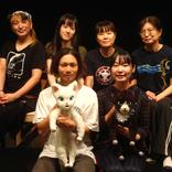 名古屋の劇作家・渡山博崇と演出家・刈馬カオスが初タッグを組み、世界で愛される猫の冒険物語『ジェニィ』を人形劇化