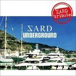 【令和も歌い継ぐ】ZARDトリビュートアルバムでメジャーデビューしたバンド「SARD UNDERGROUND」