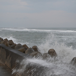 台風19号の影響による首都圏「演劇」公演の開催状況について