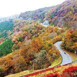 【関西】絶景の紅葉名所と巡ろう!秋の日帰りおすすめドライブスポット27選<2019>