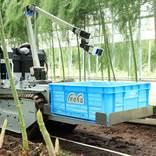 農業の人手不足はAIで解消!?自動収穫ロボットのシェアリングサービスが開始