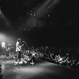 DYGL、即完の東京公演ライブレポ「皆がやりたいこと出来て、風通しのいい社会になってほしい」