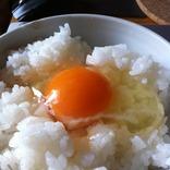 【10月30日は何の日…!?】TKG…たまごかけごはんの日!