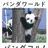 安住紳一郎アナも泣いた!? パンダ愛好家の著者が綴る、その魅力と奥深き世界