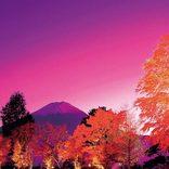 【関東近郊】日帰りドライブコース14選!温泉・グルメ・観光のおすすめスポットを巡る