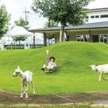 子どもが楽しめる!九州の「おすすめ遊びスポット」12選。ランチ情報付き!