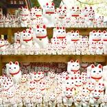 【福】招き猫発祥と言われる『豪徳寺』は猫好きの楽園 → 隠れ猫さんもいたよ~!
