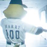 福岡ソフトバンクホークス【ハリーホーク】の秘めた想いとは…?<PERSOL>パ・リーグ全6球団のマスコットたちのメッセージムービー