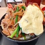 【アカン】「伝説のすた丼屋」の新メニュー『トリプルすたみな爆肉丼』を頼んだら最終決戦みたいなのが来た