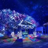 今週どこ行く?東京都内近郊おすすめイベント【12月5日(木)~12月11日(水)】無料あり