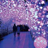 光の絶景に包まれる!関東の人気イルミネーションスポット7選<2019-2020>