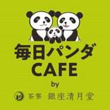 毎日パンダだらけの「毎日パンダカフェ」でパンダだらけの新メニューを毎日食べないか。