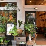 目黒・インテリア通りの生花店が営むグリーンいっぱいのカフェ