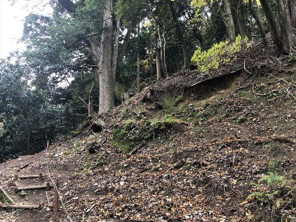 白石神社からの登山道
