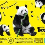 東京メトロと東京ウォーカーがコラボ オリジナル24時間券がセットになった2月号特別版を販売