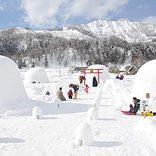 【関東近郊】2019年1月2月開催イベント36選!観光やデートにもおすすめ