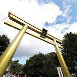 【東海】2020年初詣で行きたい開運スポット!恋愛運や金運アップを狙おう!