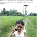 帰宅途中の6歳女児、オオスズメバチの群れに襲われ死亡(カンボジア)