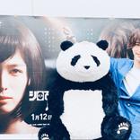 """横浜流星、""""巨大パンダ""""との2ショット公開に反響「かっこよすぎてしんどい」「今日のビジュアルも最&高」"""