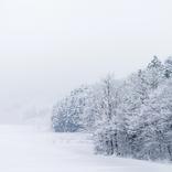 【日本の冬絶景】寒いからぬくもりが嬉しいストーブ列車 青森県の雪景色