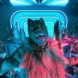Official髭男dism藤原聡がセクシーに歌い上げる 映画『キャッツ』日本語吹替版からラム・タム・タガー熱唱シーンを公開