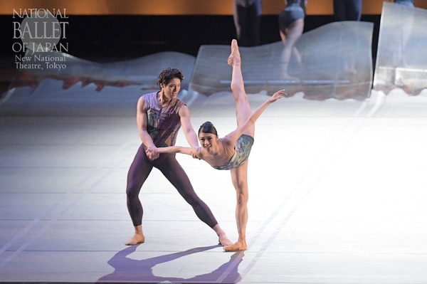 『DGV Danse à Grande Vitesse (C)』寺田亜沙子、福岡雄大(撮影:鹿摩隆司/写真提供:新国立劇場)