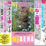"""AERAが一冊まるごと""""猫化""""、 NyAERA(ニャエラ)が今年も発売"""
