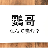 【鸚哥】って読める?読めない!「読みたい漢字ファイル」vol.23