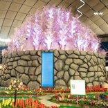 美しい花の魅力を満喫! 「世界らん展2020」が開催!