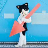 むぎ(猫)、本日配信開始のアルバムより「天国かもしれない」ライブ映像公開