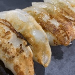 【究極】今まで食べていた餃子は何だったんだ⁉︎ 幻の食材「葉にんにく」を使った『有機の葉にんにくで作ったヘルシー餃子』が餃子の概念を覆す