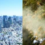 都会育ち、キレイ好きは花粉症になりやすい!? アレルギーと花粉症の気になるハナシ