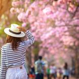 女性101名が回答!3月に行きたい旅スポットNo.1は東京ディズニーリゾート?