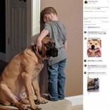 叱られた3歳児にピタリと寄り添う犬「1人にはさせないよ」(米)