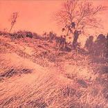 『きのうの思い出に別れをつげるんだもの』はザ・ディランIIが遺したフォーク黎明期の遺産