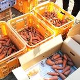 規格外野菜をこども食堂へ寄付! 日本の食品ロス問題に取り組む学生たちを取材してみた