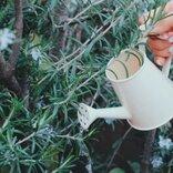 春本番に向けて、3月は恋愛の種まきをしよう