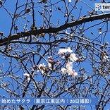 21日 桜咲き進む陽気 北海道から東北は荒れる